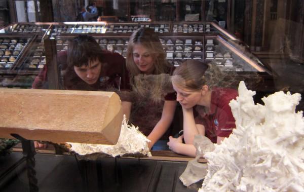 Praktische Anwendungen im Naturhistorischen Museum