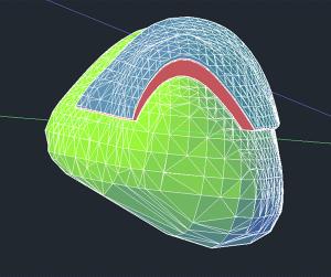 Die endgueltige SP Simulation ueber einer Schulter: Blau zeigt die harte Schicht des SP, gruen die original Schulter. © OEWF (Marc Rodriguez)