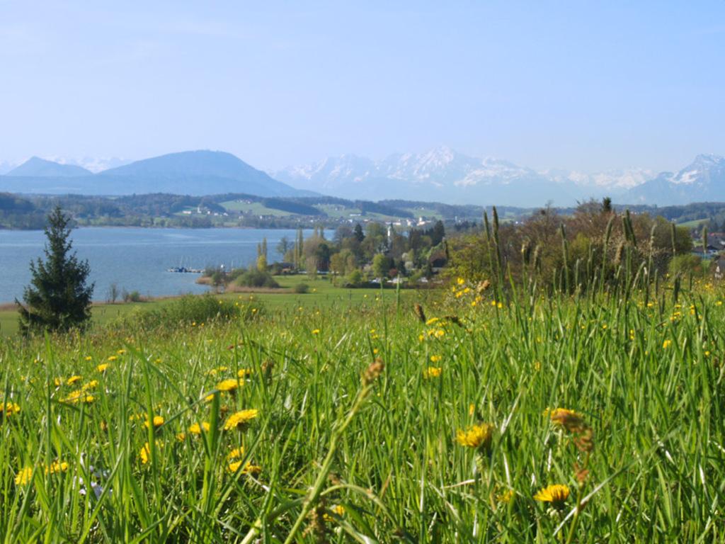 [Intern] ÖWF Zieleworkshop 2012 im Salzburger Seenland: Jetzt anmelden!