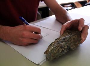 Auch Teil der Prüfung: Korrektes Beschreiben einer geologischen Probe.