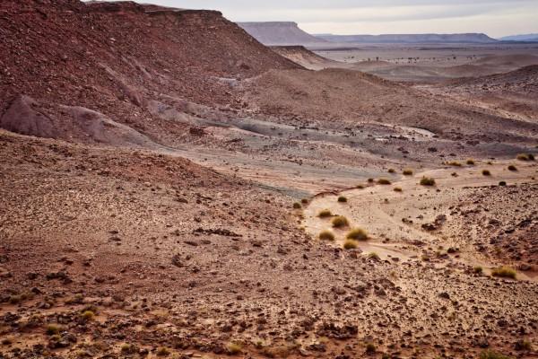 The rough terrain near Station Payer. © OeWF (Katja Zanella-Kux)