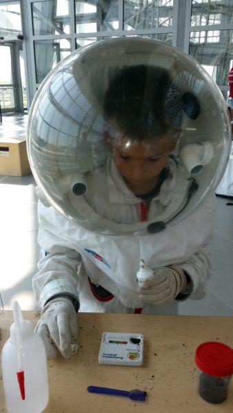 Analyzing the sample (c) OeWF