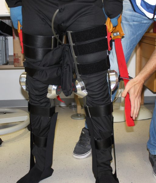 The legs of the exoskeleton (c) OeWF