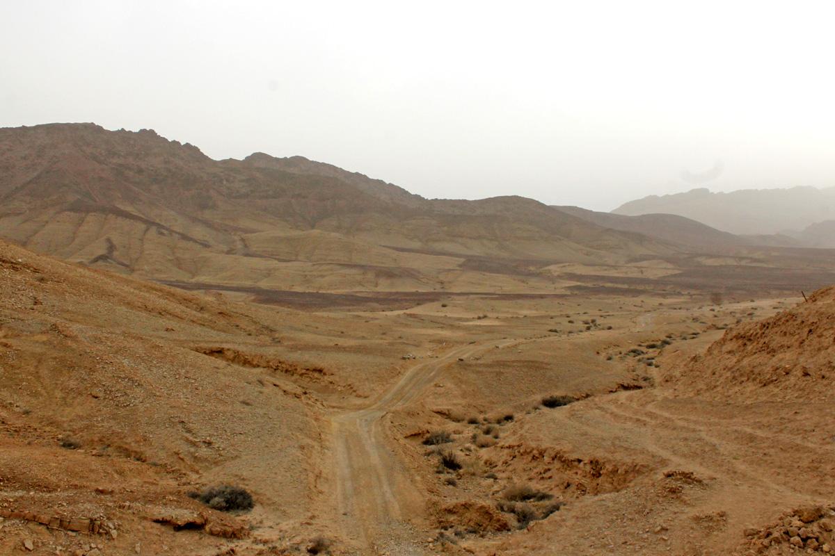 Negev Wüste Israel
