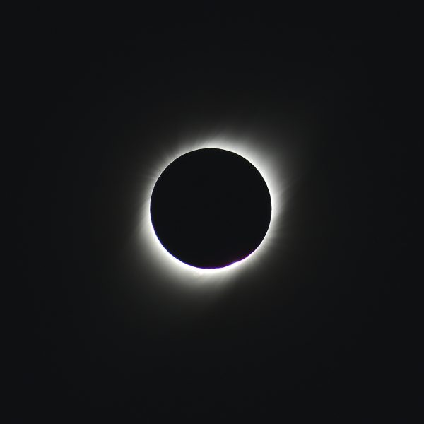 The solar eclipse with the corona of the sun (c) OeWF (Olivia Haider)