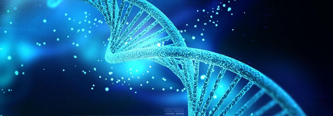 Erbinformationstragende Moleküle des Lebens: Wieviele davon gibt es eigentlich?