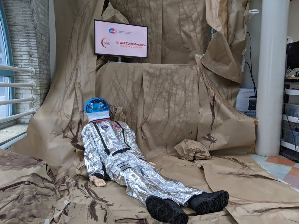 """Simulation setting with a """"dummy"""" analog astronaut"""